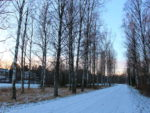 ヘルシンキ冬景色Munkkiniemi画像