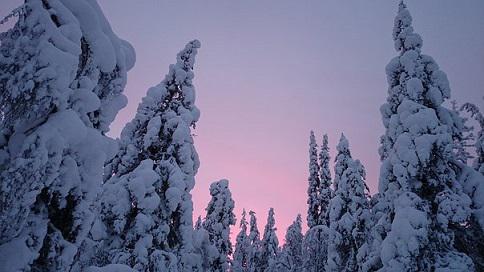 フィンランド 雪景色