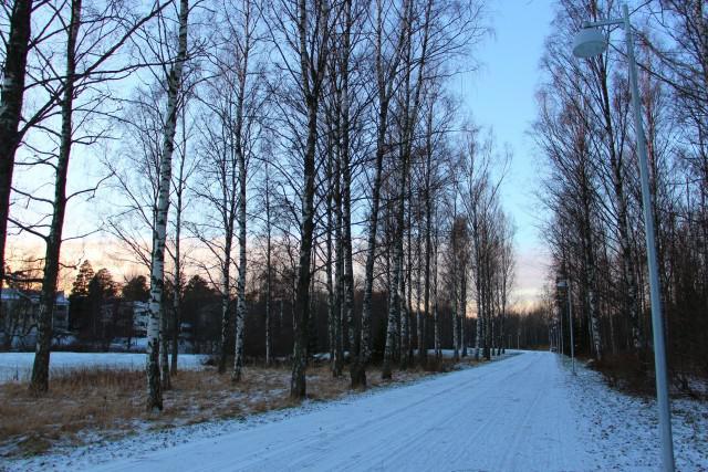 フィンランド ヘルシンキの冬景色