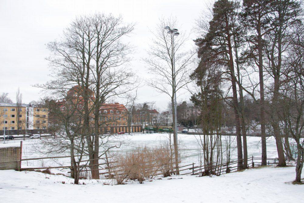 アルヴァ・アールト自宅にある庭から見えるグランド