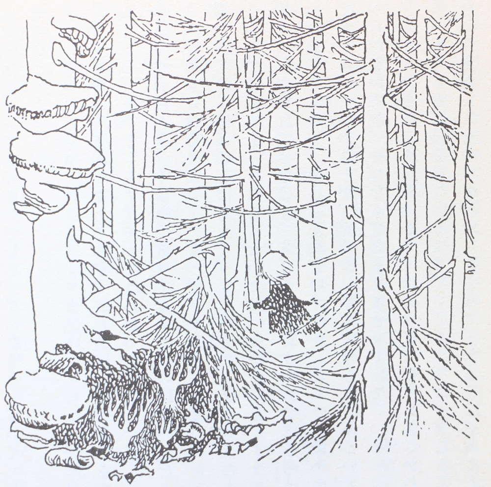 5分で読むムーミン小説 ムーミン谷の十一月 7 キートスショップ