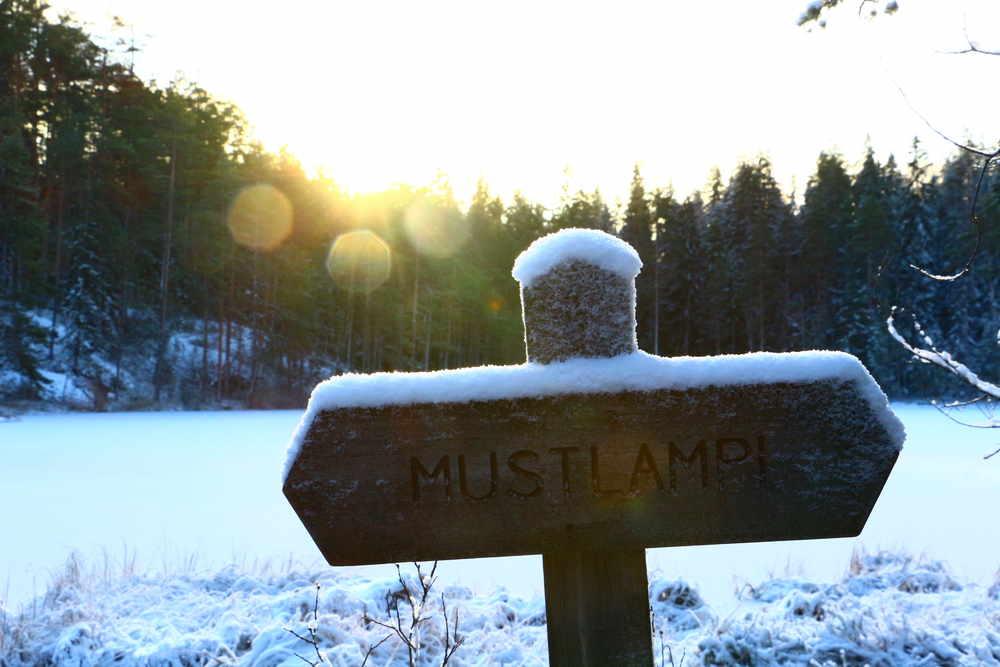 Luukkiハイキングルートにある凍結した池Mustalampi