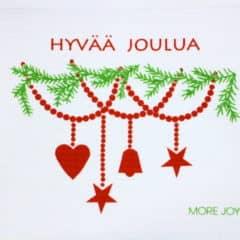 スポンジワイプMore Joyヒュヴァーヨウルアの全体写真