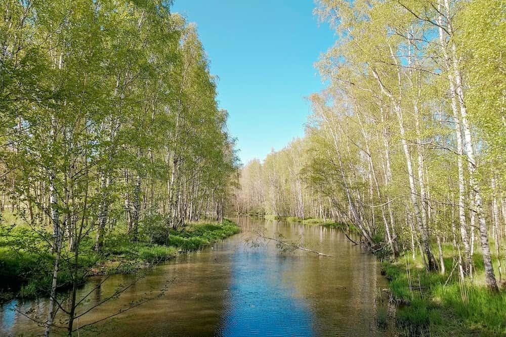 フィンランドの景色・5月の川