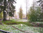 フィンランド2020年5月の雪